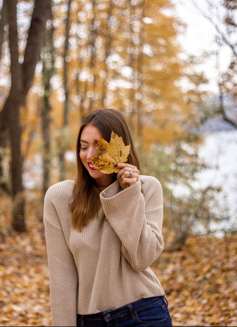 Fall Sweaters (for less)